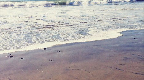 """WALK ALONG THE BEACH IN TYPSY PANTHRE LAND: """"MOIRÉ CIRCLES"""" MUSIC VIDEO"""